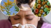 Можно ли расширять рациона при респираторном аллергозе?