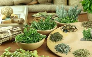 Какие травы помогают снизить вес?