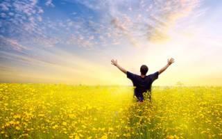 Как относиться к советам о счастье