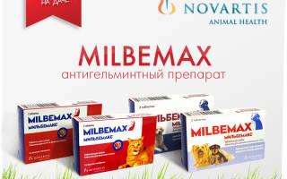 Инструкция к использованию Мильбемакс против собачьего гельминтоза