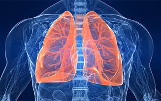 Чем нужно лечить воспаление легких?