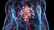Симптомы и лечение респираторного хламидиоза