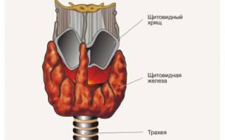 Признаки развития рака щитовидной железы