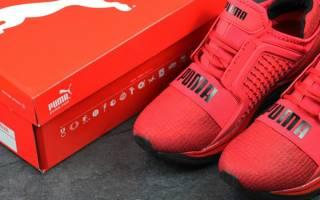 Мужские и женские кроссовки PUMA – все преимущества бренда