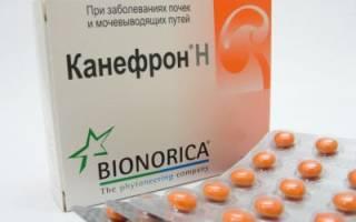 Состав и инструкция по применению препарата Канефрон