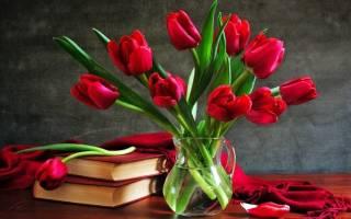 Цветы в вазе: как дольше любоваться их красотой