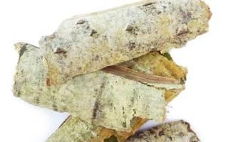Чем полезна кора осины?