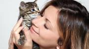 Опасны ли кошачьи глисты для человека?