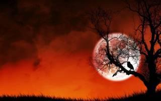 История появления вальпургиевой ночи, ее обряды и запреты