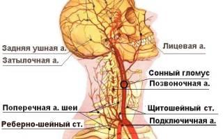 Почему болит шея и правый висок?