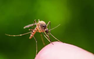 Как сделать средства от комаров своими руками