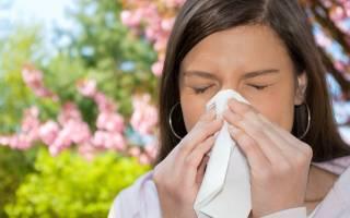 Аллергия. Полный справочник