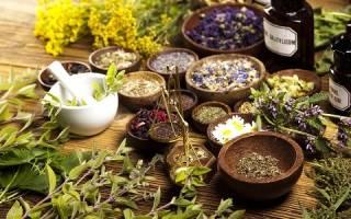 Лечения поджелудочной железы лекарственными травами