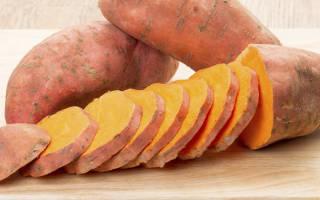 Сладкий картофель – вред и польза батата