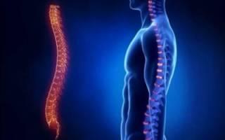 Лечебные упражнения для эффективного укрепления грудного отдела позвоночника