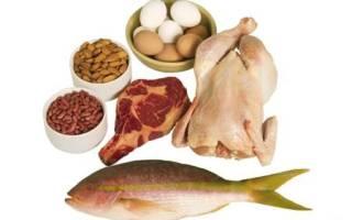 Какие продукты наиболее богаты белком?