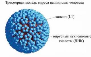 Нужна ли прививка от ВПЧ?