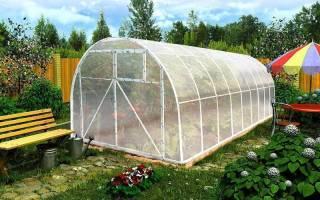 Использование секретов строительства теплицы для увеличения урожая