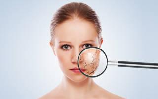 Выбор пудры для сухой кожи лица