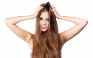 Причины и лечение прыщей в голове в волосах