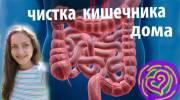 Правильное очищение кишечника от паразитов