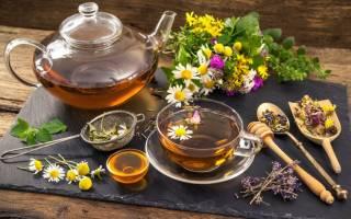 Травяные чаи на страже иммунитета