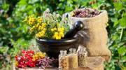 Выбираем эффективные травы для очищения кишечника