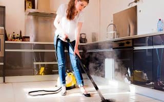Как выбрать домашний пароочиститель