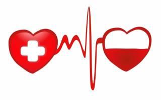 День донора в России – благодарность за спасенные жизни