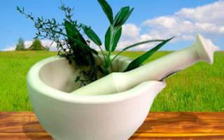 Экзема лечение народными средствами: рецепты из трав и не только