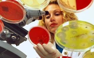 Эффективные методы диагностики гельминтозов