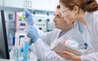 Метод выявления антител к аскаридам