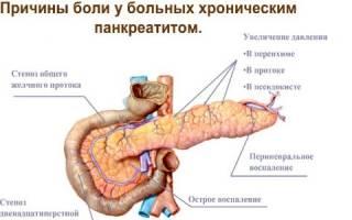 Чем полезна расторопша при панкреатите?