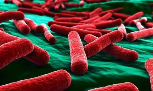 Часто воспаление в мочевом пузыре вызывают бактерии, попавшие в мочевые пути
