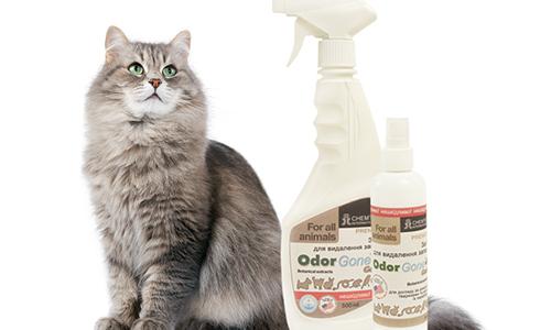 В зоомагазине можно приобрести средство Одоргон, которое быстро устранить запах кошачьей мочи