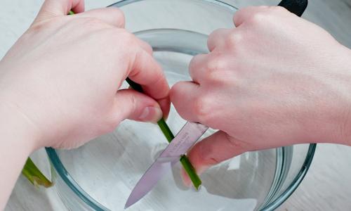 Если цветы выделяют млечный сок, то подрезать концы нужно под водой и окунуть их на пару секунд в кипяток
