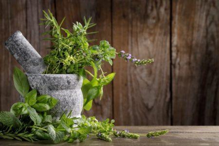 Лечение цистита травами: какие выбрать и как правильно использовать. Травяные сборы для лечения цистита