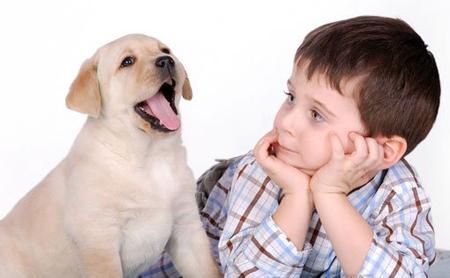 Мальчик с собакой!