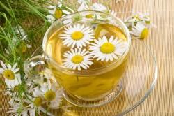 Польза травяного чая ромашки при ротавирусной инфекции