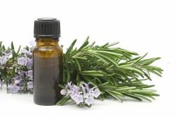 Эвкалиптовое масло для лечения насморка
