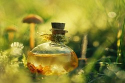 Касторовое масло при запоре