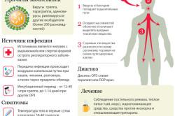 Симптомы и лечение ОРЗ