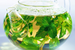 Травяные отвары для лечения запора