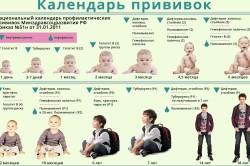 Календарь прививок от рождения