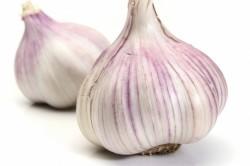 Польза чеснока при боли в горле