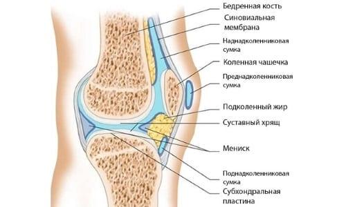 Правила наложения повязки на колено
