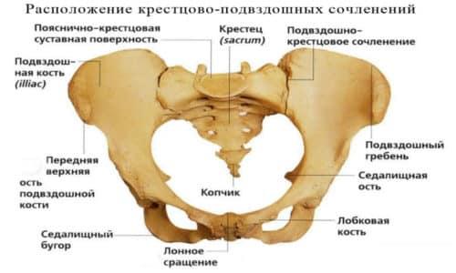 Воспаление подвздошной кости причины классификация лечение и прогноз