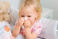 Лечение насморка с помощью каланхоэ у детей
