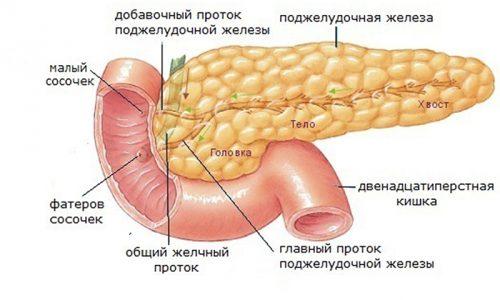 Нарушение функции поджелудочной железы может привести к развитию сахарного диабета. Но наиболее распространенная болезнь поджелудочной железы - это панкреатит