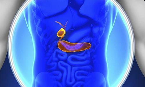 Под полипами подразумевается доброкачественная опухоль, которая образовалась на слизистой оболочке разных внутренних органов.